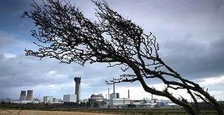 Sellafield field
