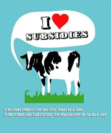 Cows751581